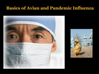 Basics of Avian and Pandemic Influenza