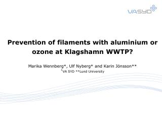 Problem Filamentous microorganisms Solution Aluminium or ozone? Control of sludge age?