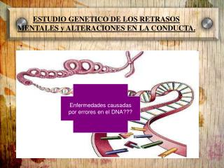 ESTUDIO GENETICO DE LOS RETRASOS MENTALES y ALTERACIONES EN LA CONDUCTA.
