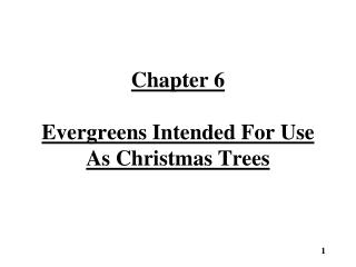 Chapter 6 Evergreens Intended For Use As Christmas Trees