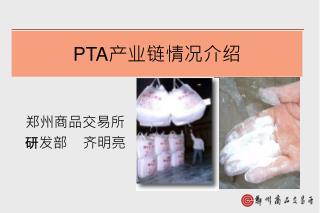 PTA 产业链情况介绍