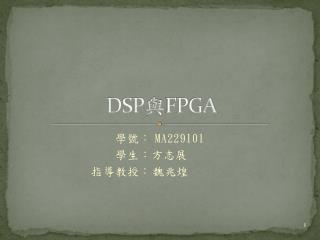 DSP 與 FPGA