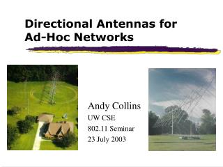 Directional Antennas for  Ad-Hoc Networks