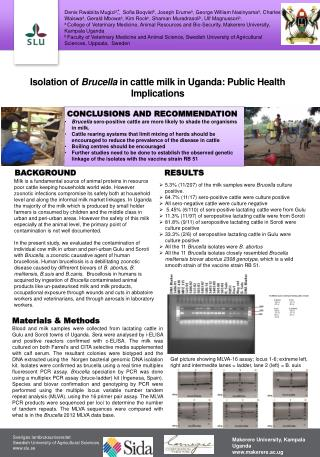 Isolation of  Brucella  in cattle milk in Uganda: Public Health Implications