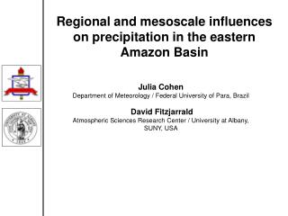 Regional and mesoscale influences on precipitation in the eastern Amazon Basin
