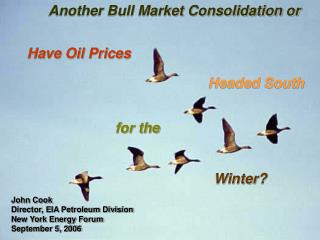 Have Oil Prices