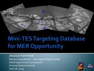 Mini-TES Targeting Database for MER Opportunity