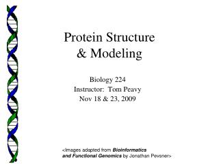 Protein Structure & Modeling