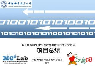 基于内存的NoSQL分布式数据库技术研究项目 项目总结