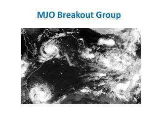 MJO Breakout Group
