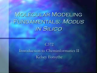 Molecular Modeling Fundamentals:  Modus in Silico