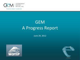 GEM  A Progress Report