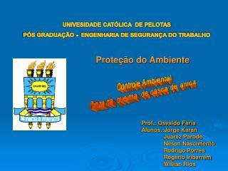 UNIVESIDADE CATÓLICA  DE PELOTAS PÓS GRADUAÇÃO -  ENGENHARIA DE SEGURANÇA DO TRABALHO