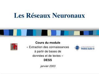Les R seaux Neuronaux