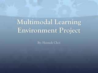 Multimodal Learning Environment Project