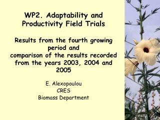E. Alexopoulou  CRES Biomass Department