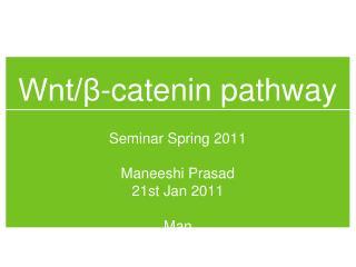Wnt/β-catenin pathway