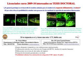 Licenciados curso 2009-10 interesados en TESIS DOCTORAL