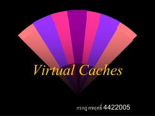 Virtual Caches