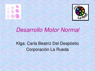 Desarrollo Motor Normal