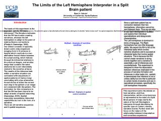 The Limits of the Left Hemisphere Interpreter in a Split Brain patient