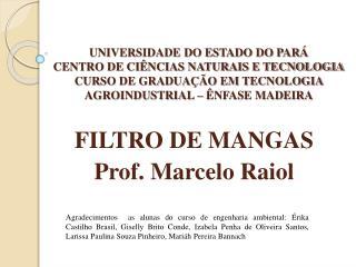 FILTRO DE MANGAS Prof. Marcelo  Raiol