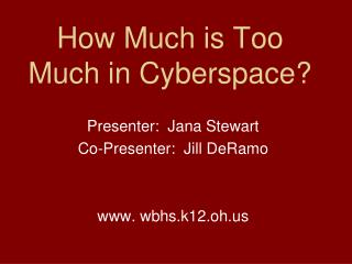 How Much is Too Much in Cyberspace?