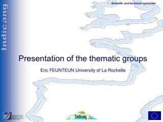 Presentation of the thematic groups Eric FEUNTEUN University of La Rochelle