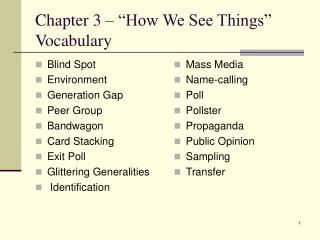 "Chapter 3 – ""How We See Things"" Vocabulary"