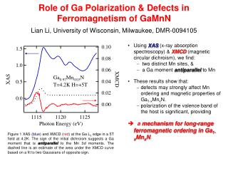 Role of Ga Polarization & Defects in Ferromagnetism of GaMnN