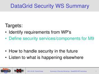 DataGrid Security WS Summary