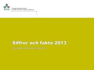 Siffror  och fakta  2013