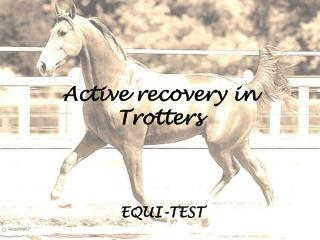 Active recovery in Trotters
