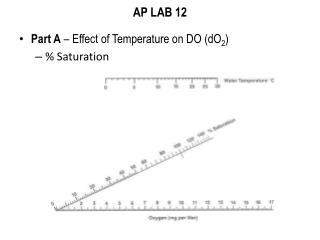 AP LAB 12
