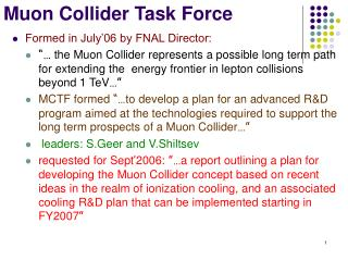 Muon Collider Task Force