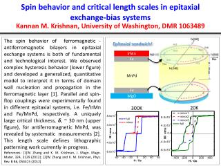 Spin behavior and critical length scales in epitaxial exchange-bias systems