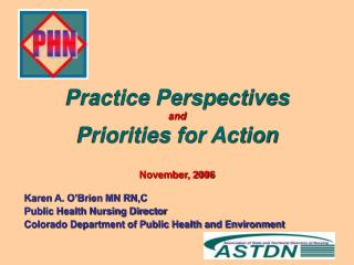 Practice Perspectives and Priorities for Action November, 2006