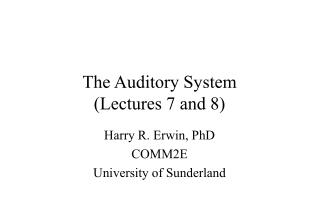 The Auditory System  (Lectures 7 and 8)