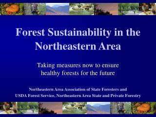 Forest Sustainability in the  Northeastern Area