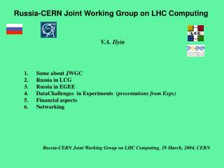 Russia-CERN Joint Working Group on LHC Computing