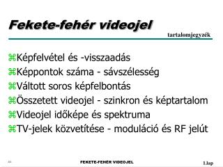 Fekete-fehér videojel