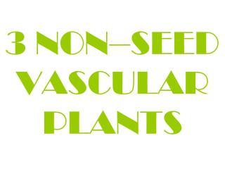 3 NON–SEED VASCULAR PLANTS