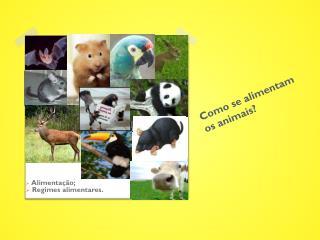 Como se alimentam os animais?