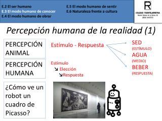 Percepción humana de la realidad (1)