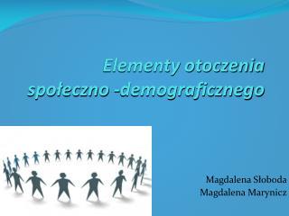 Elementy otoczenia społeczno -demograficznego