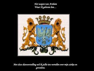 Het wapen van Arnhem