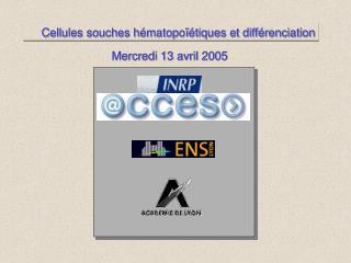Cellules souches hématopoïétiques et différenciation