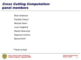 Cross Cutting Computation:  panel members