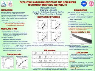 EVOLUTION AND DIAGNOSTICS OF THE NONLINEAR RICHTMYER-MESHKOV INSTABILITY
