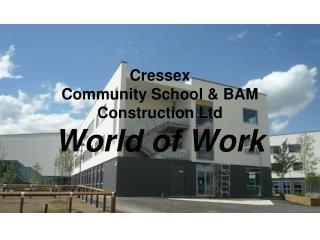 Cressex  Community School & BAM Construction Ltd World of Work